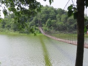 Bridge to Island of Crab- eating Macaques