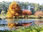 Noosa Botanical Gardens