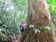 Stephanie was loving the trees on the Jungle Trek