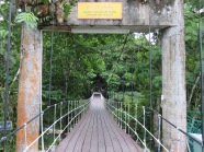 Bridge to Mulu NP