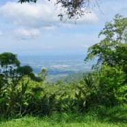 The view over Keningau from Crocker Nature Park