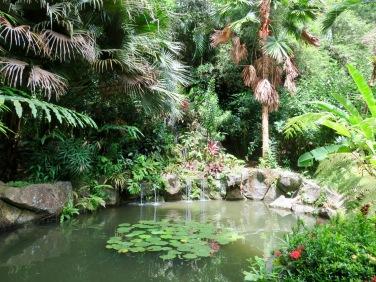 At Sepilok Rainforest Gardens