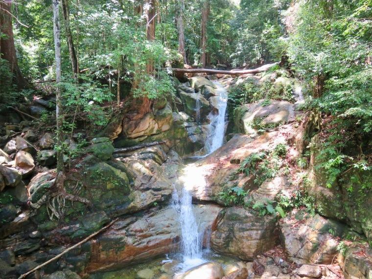Trekking Santubong National Park