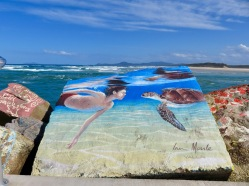 Nambucca Heads - V Wall