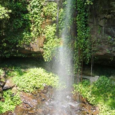 Crystal Showers Falls, Dorrigo MNational Park