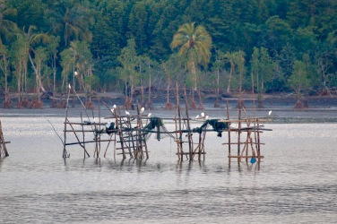 Fish traps in the bay