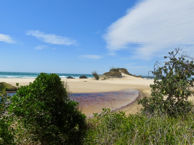 Bundagen Headland, Bongil Bongil National Park