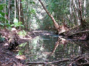 Yarriabini National Park