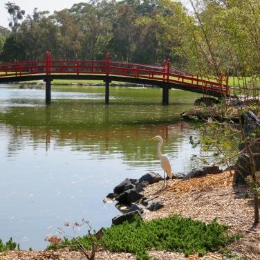 Coffs Harbour Botanical Gardens