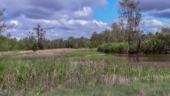Teal Lagoon