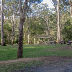 Picnic Area Queen Mary Falls