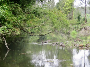 The Tweed River