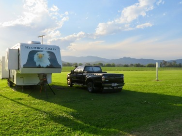 Nice open spaces at Murwillumbah Showgrounds