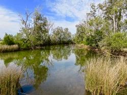 Everlasting Swamp National Park