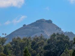 The Pyramid, Girraween NP