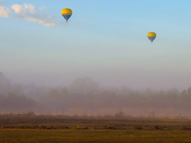 Balloons at Dawn